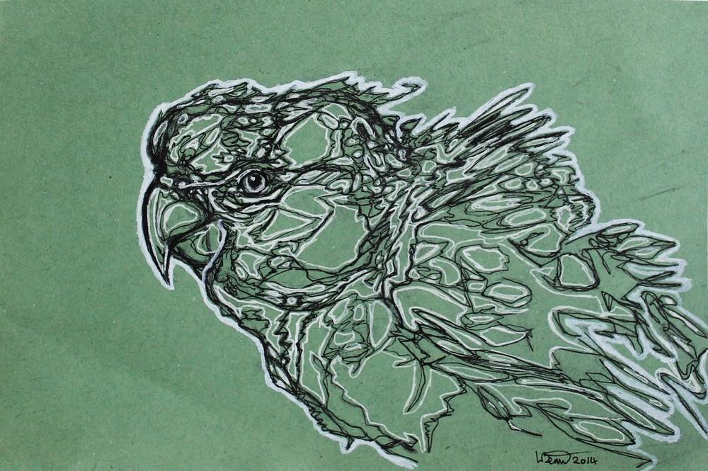 bird8.jpg.JPG