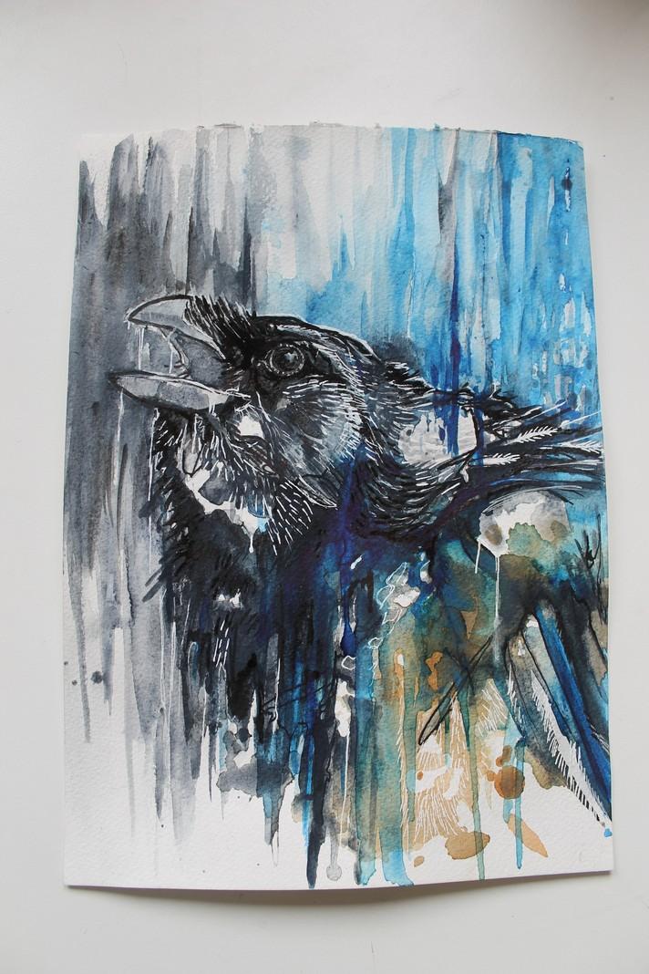 Raven1.JPG