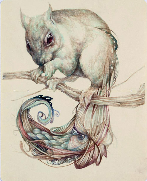 The Chemical Squirrel © Marco Mazzoni marcomazzoni.tumblr.com