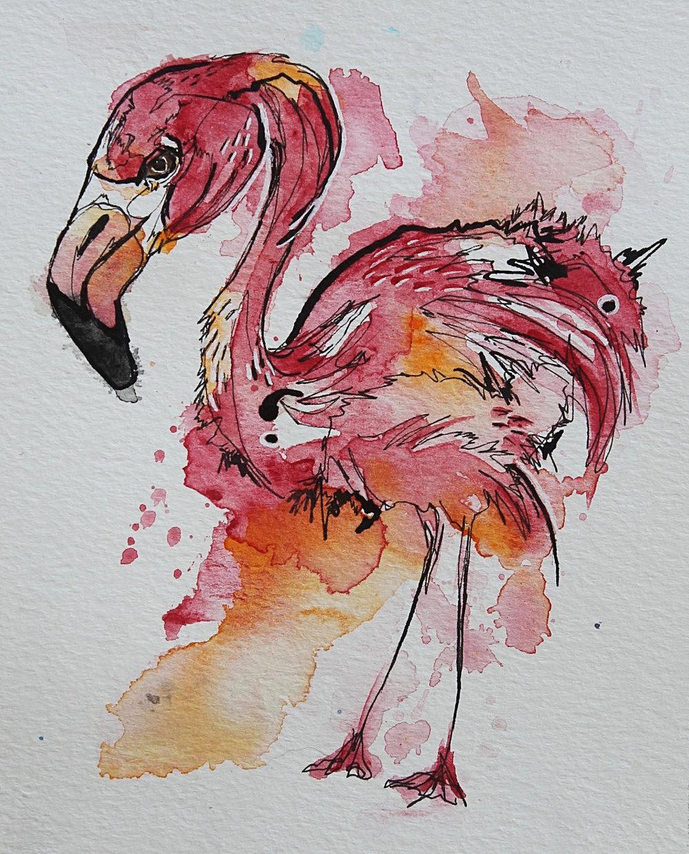 flamingo-tiny-dec-18.jpg