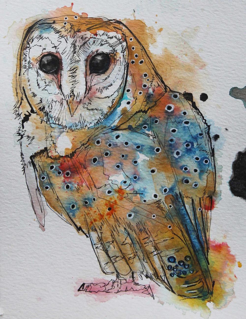 owl-dec-2018.jpg