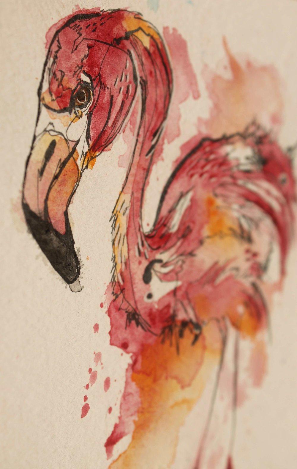 flamingo-depth.jpg
