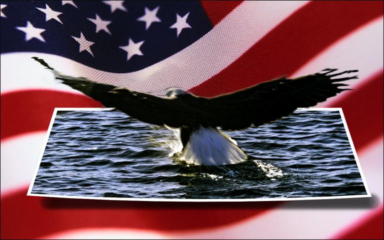american-flag-eagle.jpg