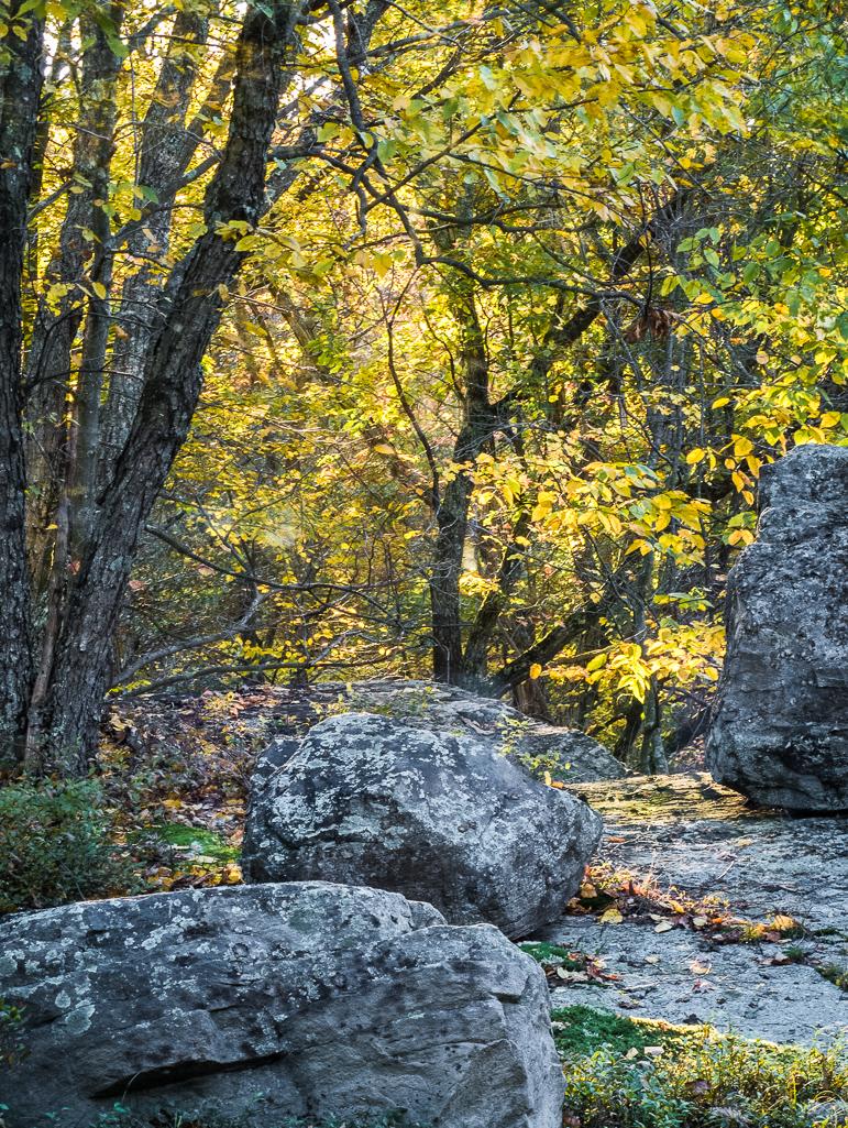 fall-12-1001-Edit.jpg