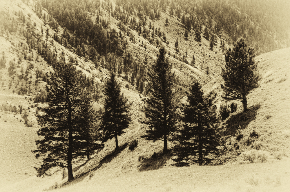 Yellowstone Sepia.jpg