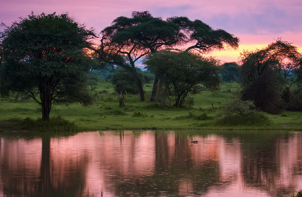 africa-2057-Edit-Edit-Edit.jpg