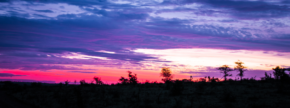 Africa-6617-Edit.jpg