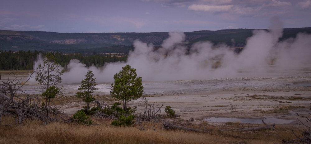 Geyser Basin - 4, Yellowstone