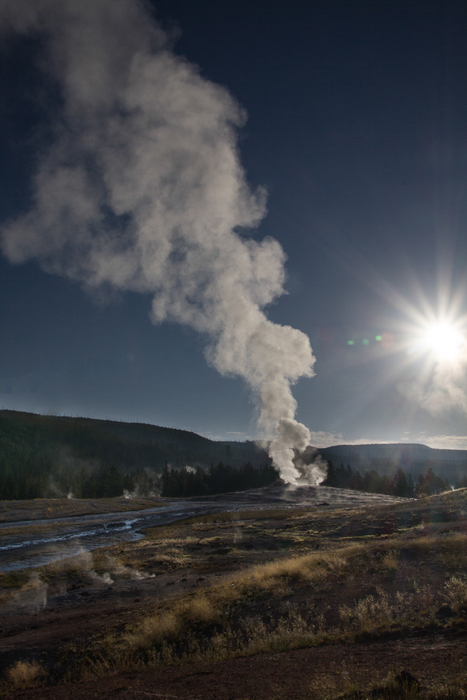 Old Faithful, Dawn, Yellowstone