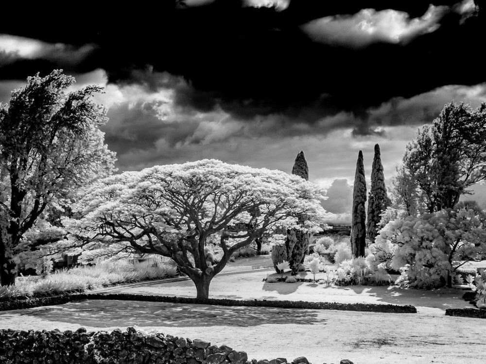 Hawaii-IR-104.jpg