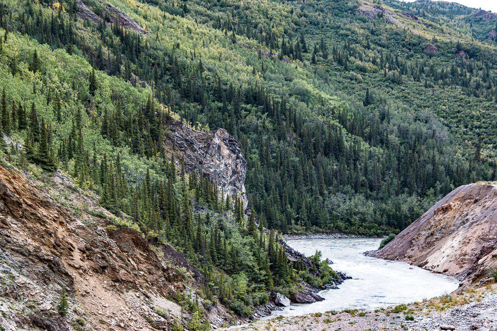 Moose creek near Kantishna