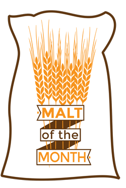 WM_MOTM_Logo_Web.jpg