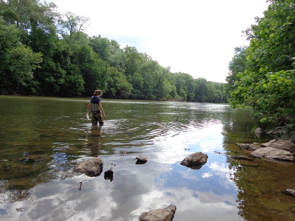 Monocacy River Photo: Alison Post