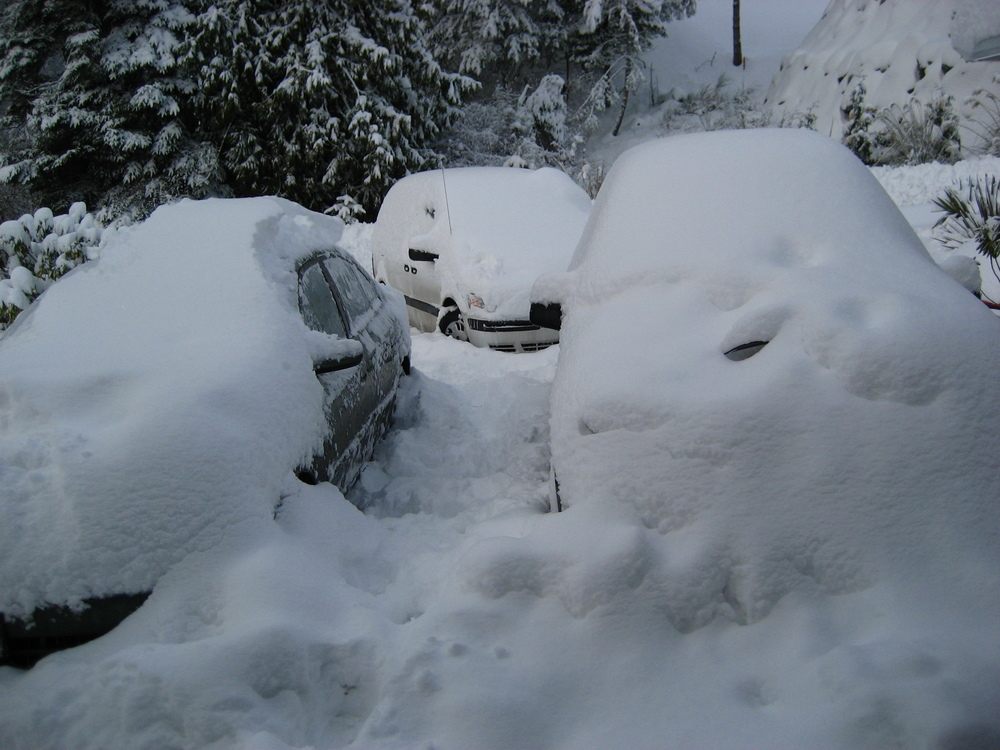 uh...where's my car?