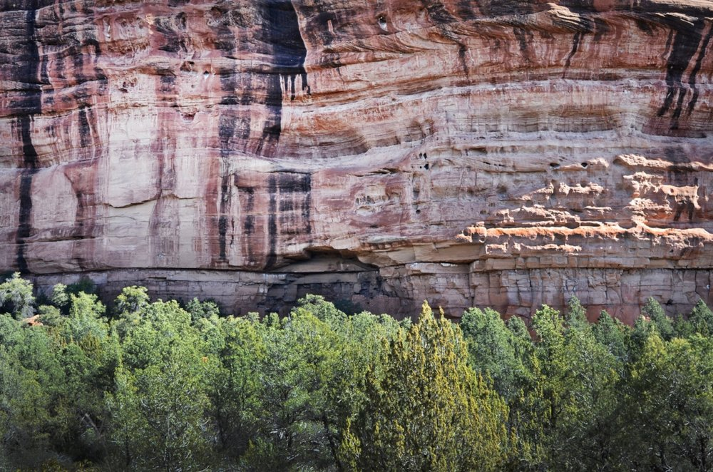 A Honanki cliff dwelling (below), built by the Sinagua indians, ancestors of the Hopi, is hidden just behind the tree line (above). The structure dates back to 1150 AD.