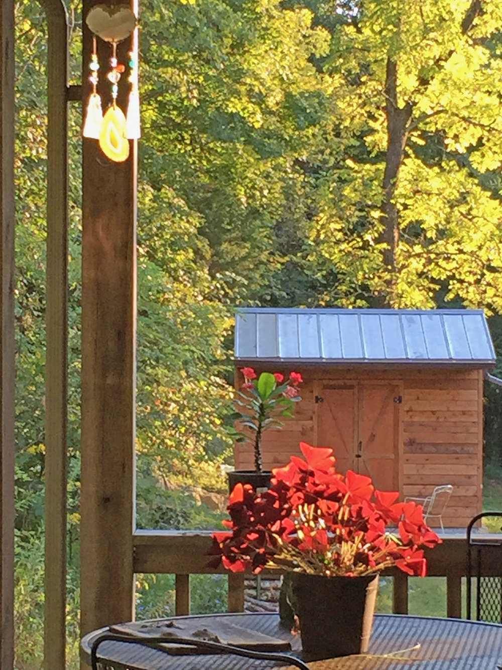 - Front porch coffee and Larry's hand constructed garden shed.