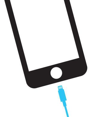 Cambiar puerto de carga de iPhone 5 en Sevilla