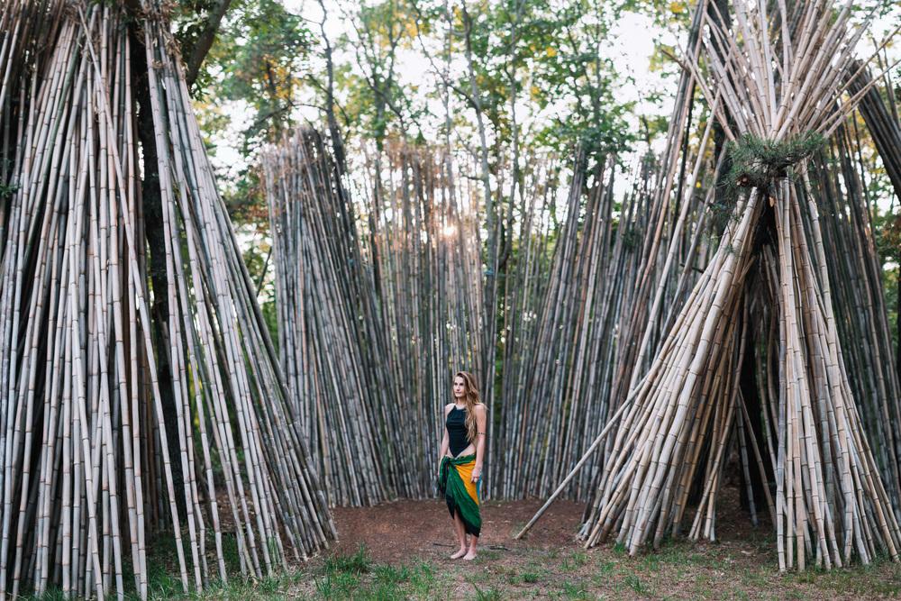 bamboo-14.jpg