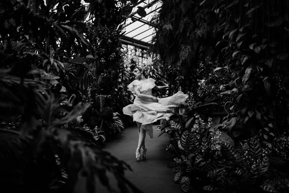 Dance_Veronica.jpg