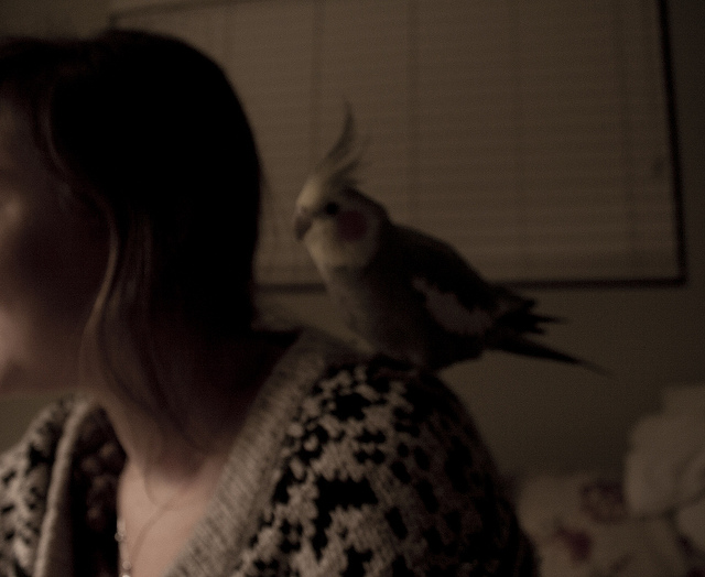 Lars Whispers to Elizabeth on Flickr.
