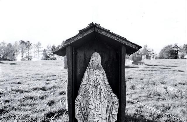 Mary on Flickr.