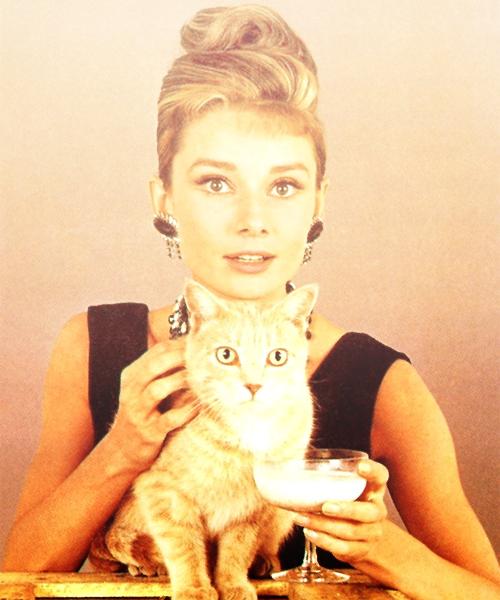 thedarkwoods: happy birthday Audrey Hepburn!