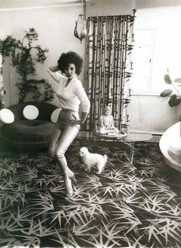 "Blaze Starr in her living room Diane Arbus July 1964  ""Nothing is ever the same as they said it was. It's what I've never seen before that I recognize."" - Diane Arbus"