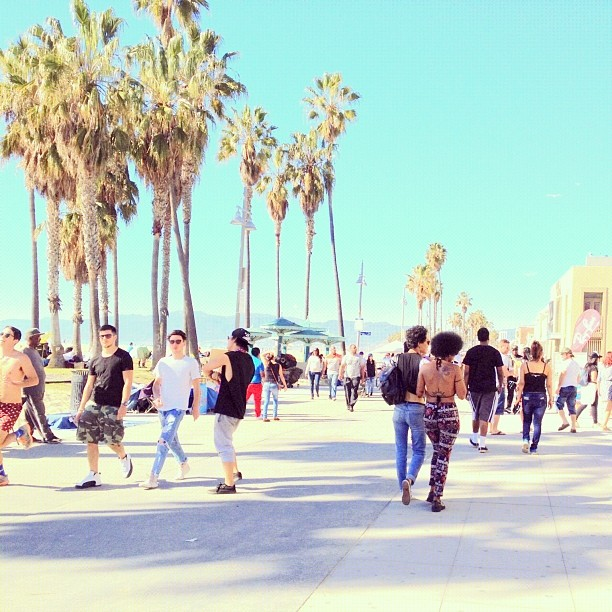 sunny sunday walk down Venice Beach