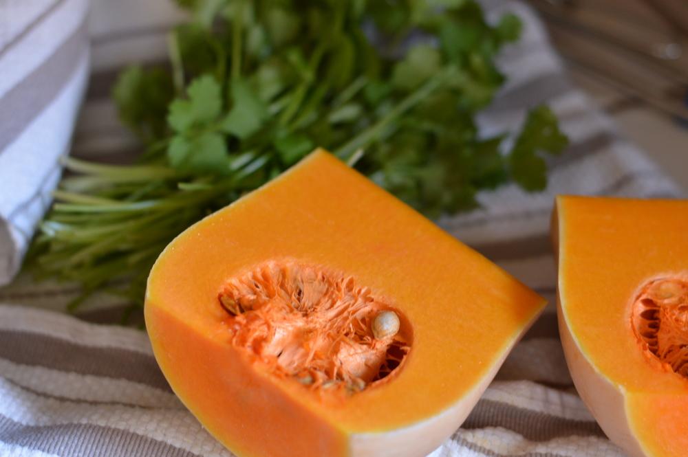 squash and cilantro