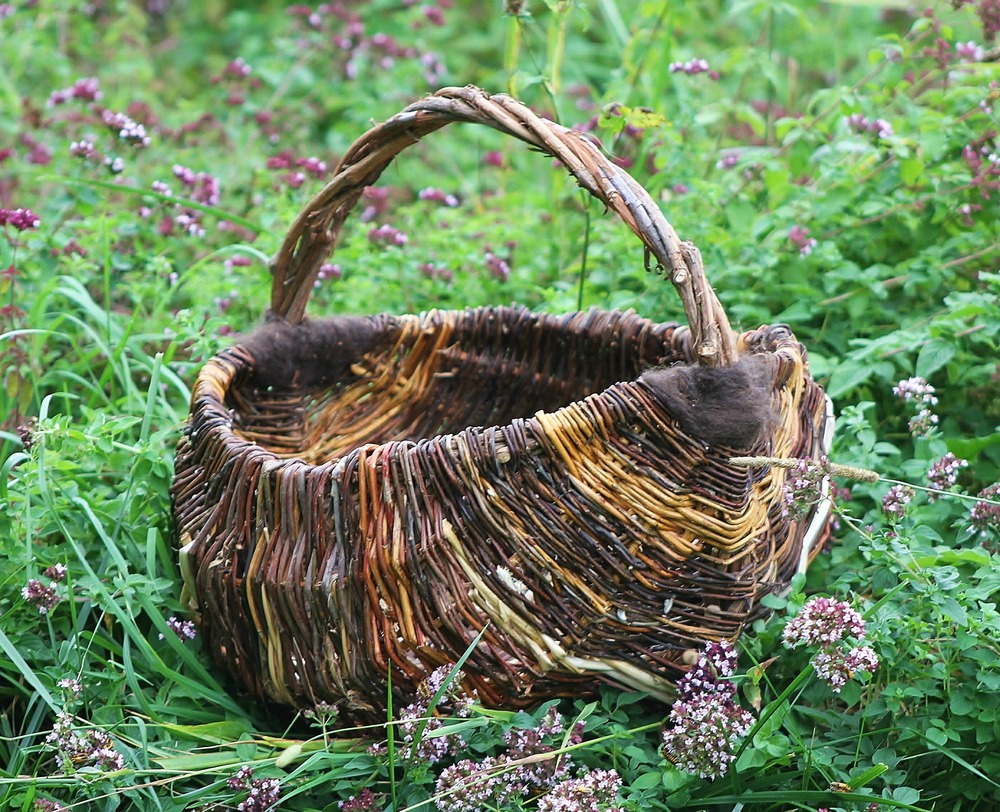 Handwoven from weeping willow, wild willow, handspun alpaca fiber, and a few garlic stems for an accent. Has a wild grapevine handle. This special basket was commissioned by a friend for a wedding present and is made from materials gathered from her farm.