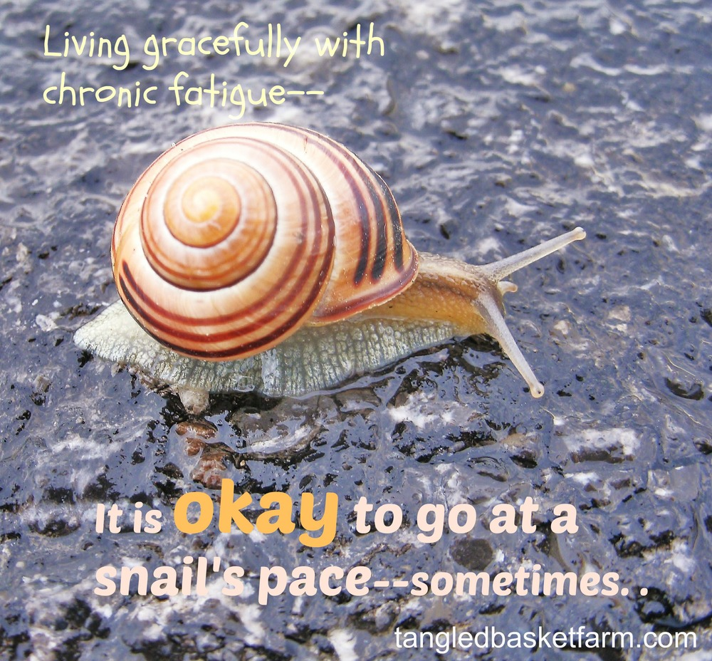 Somethings it is okay to go at a snail's pace.