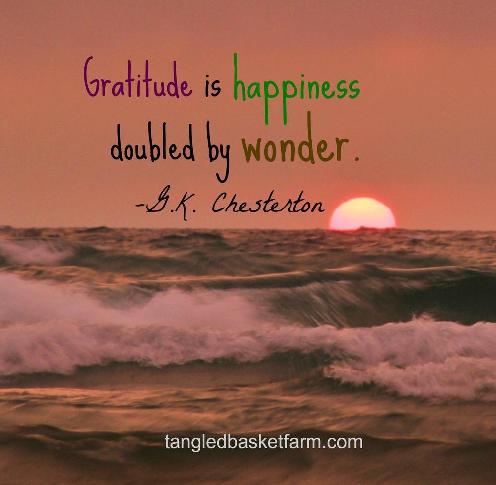 Cultivate gratitude.