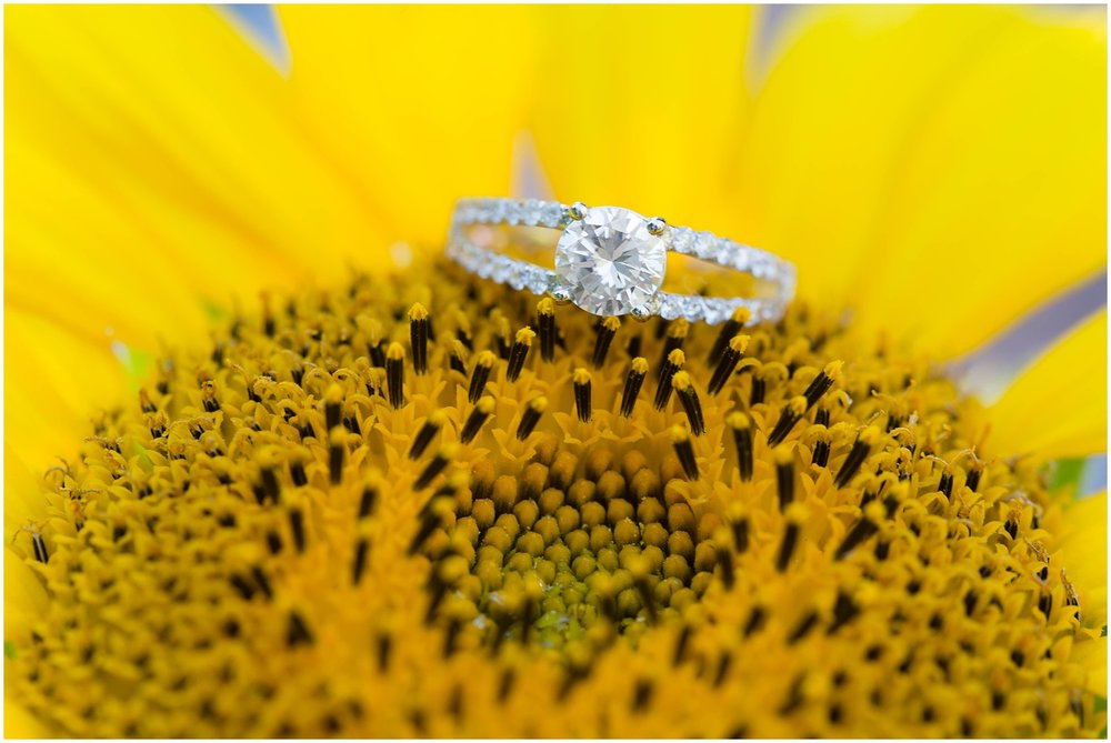Engagement Ring on a sunflower