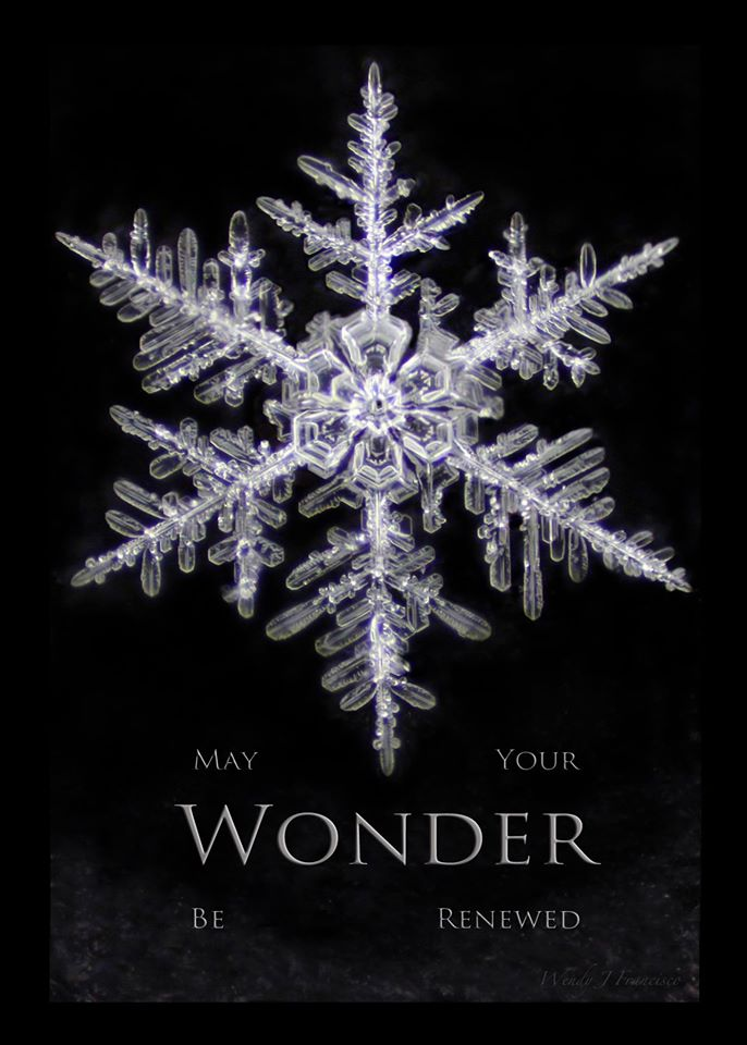 May your wonder be renewed.jpg