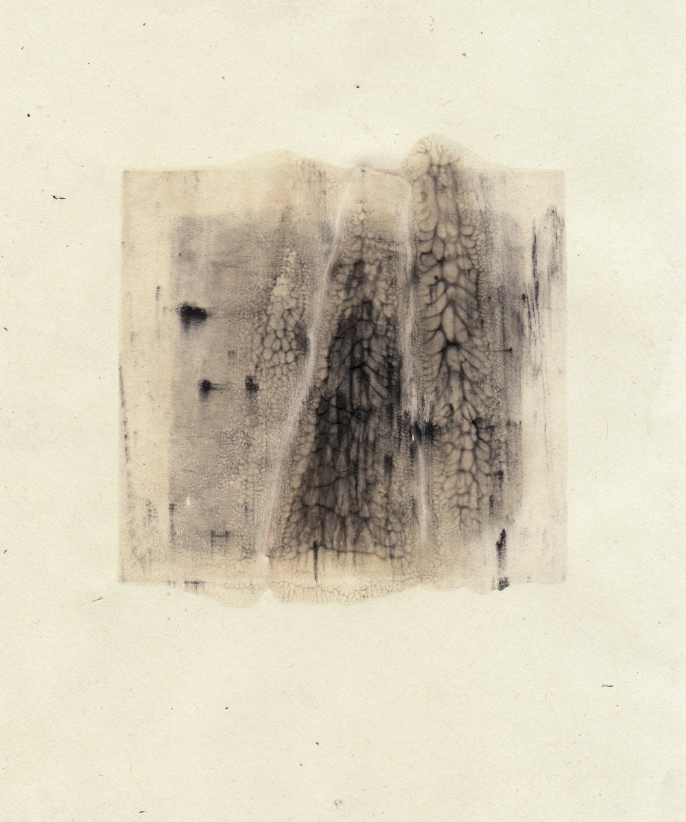 2017  Silkscreen monoprint with graphite