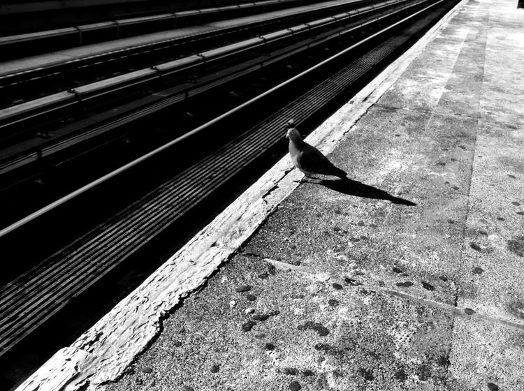subway 9871.jpg