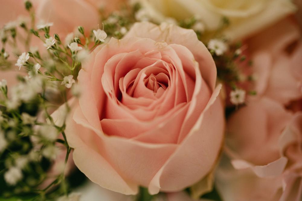 Blush_Rose_Wedding_Floral