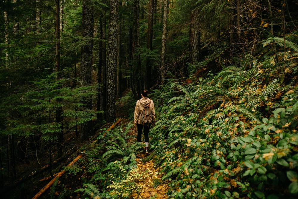 Hiking_Mount_Si_in_Washington