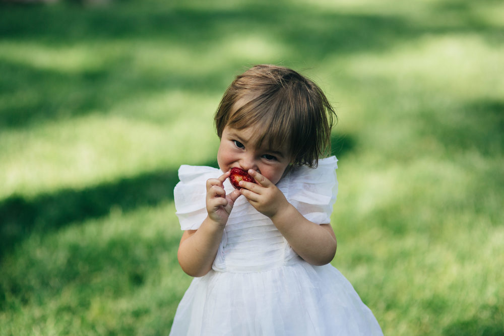 Cute flower girl dress at outdoor wedding in Toledo, Ohio.
