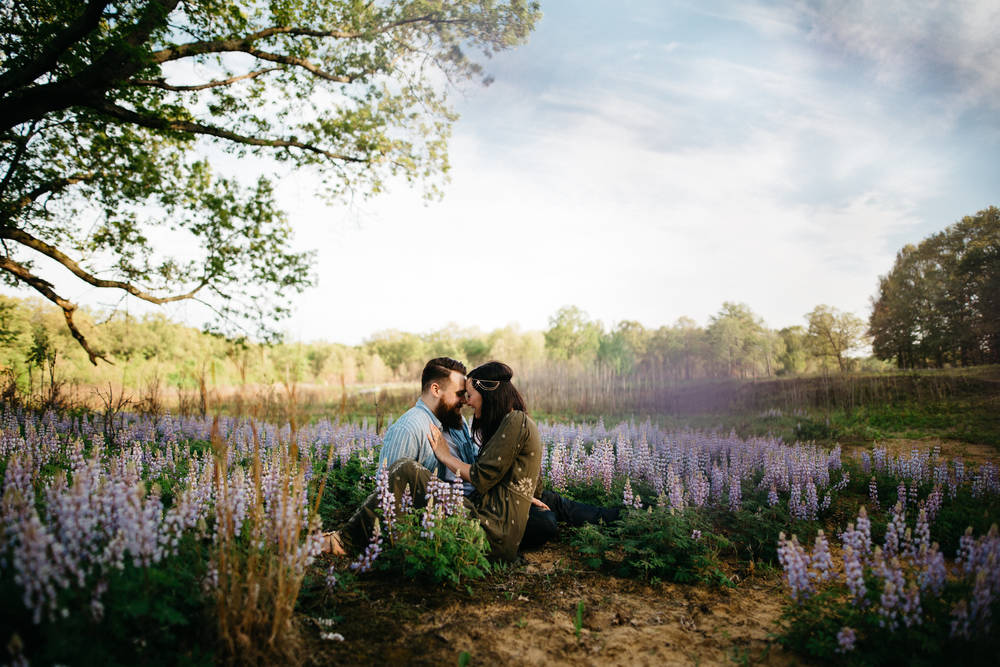 Engagement session in lavender field at Oak Openings.