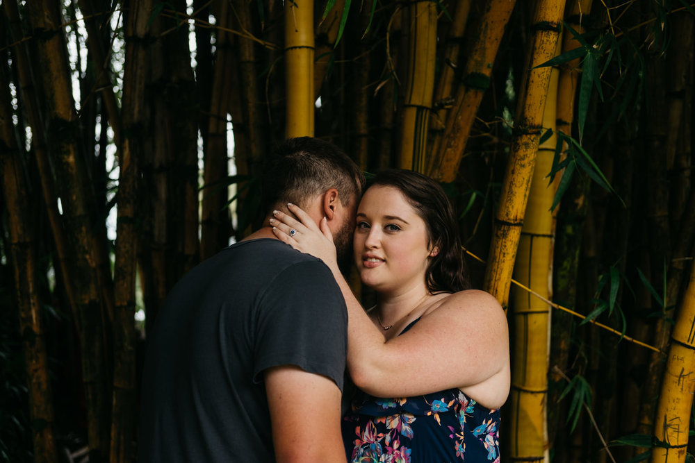 Forest engagement photography in Hawaii.
