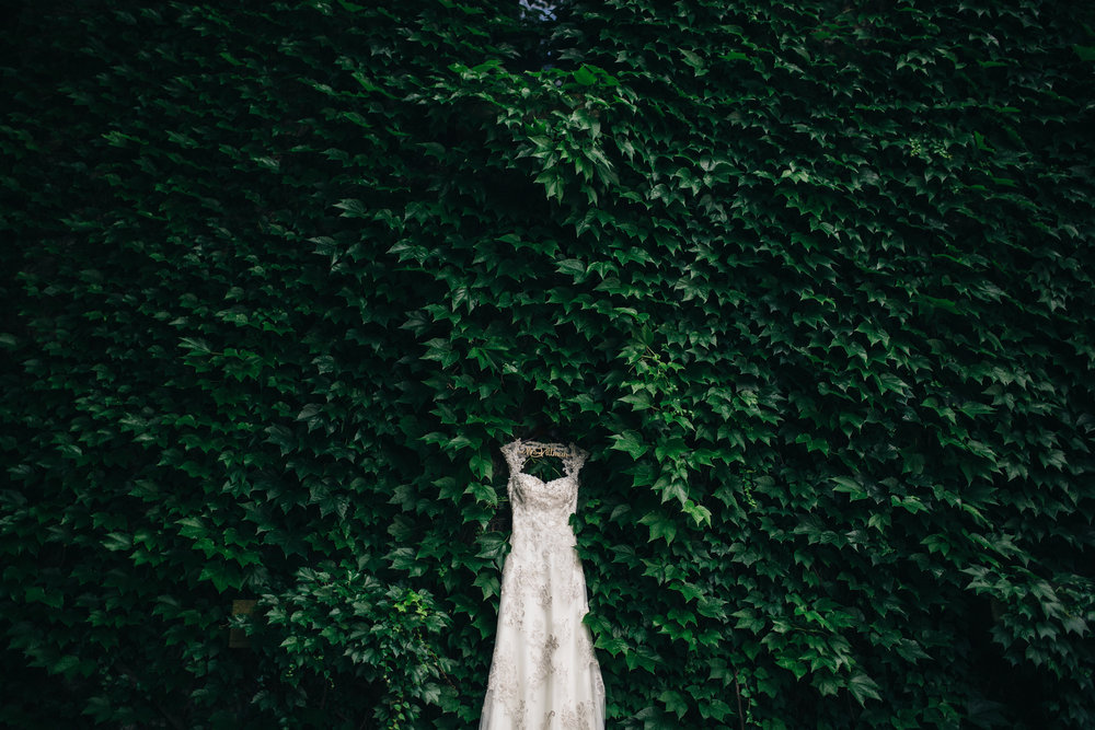Lace wedding dress on a wall of ivy.