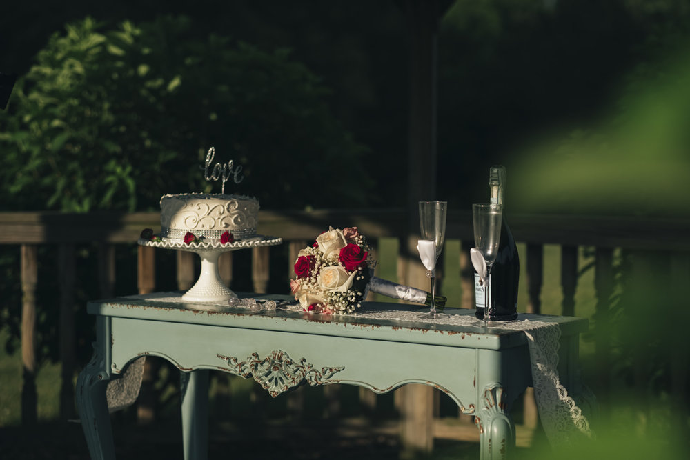 Details of the bride and groom's cake and flowers after their elopement in Toledo, Ohio.