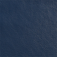 Navy Leather