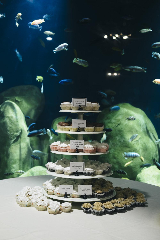 Toledo Zoo wedding cake with cupcakes