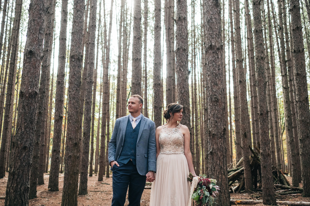 Bride and groom stand amongst the pines at Oak Openings Park near Toledo Ohio