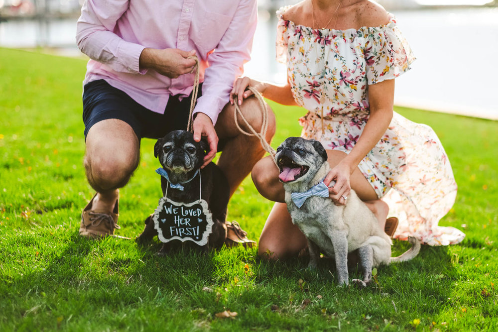 Pet Photography Engagement Session in Marblehead - Catawba Island Ohio