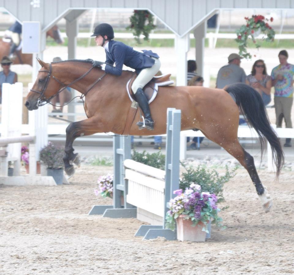 Swatch Intern Rides Horse Outdoor Photograph