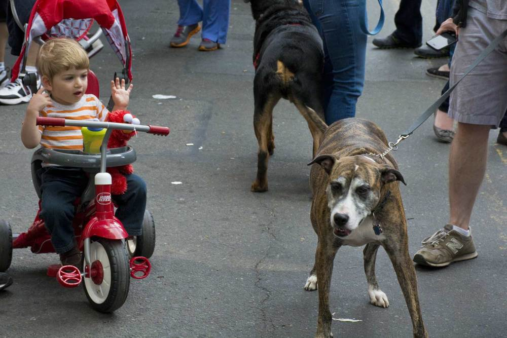 7th Ave Street Fair