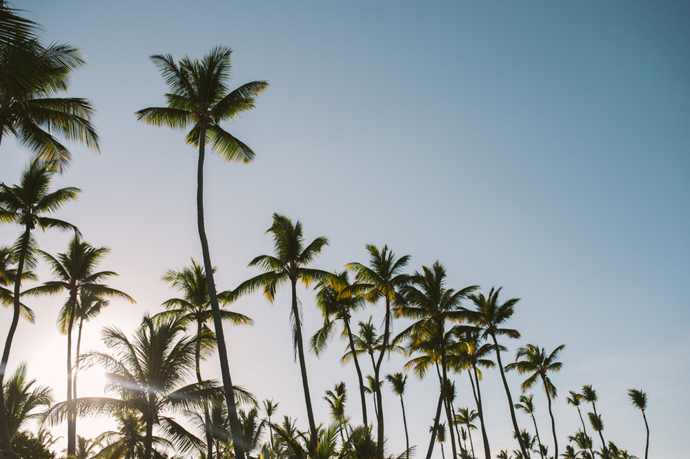 Dominicana-105.jpg